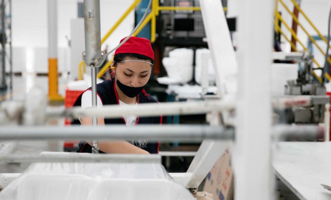 Después de 5 años, la Economía Vuelve a Crecer Gradualmente